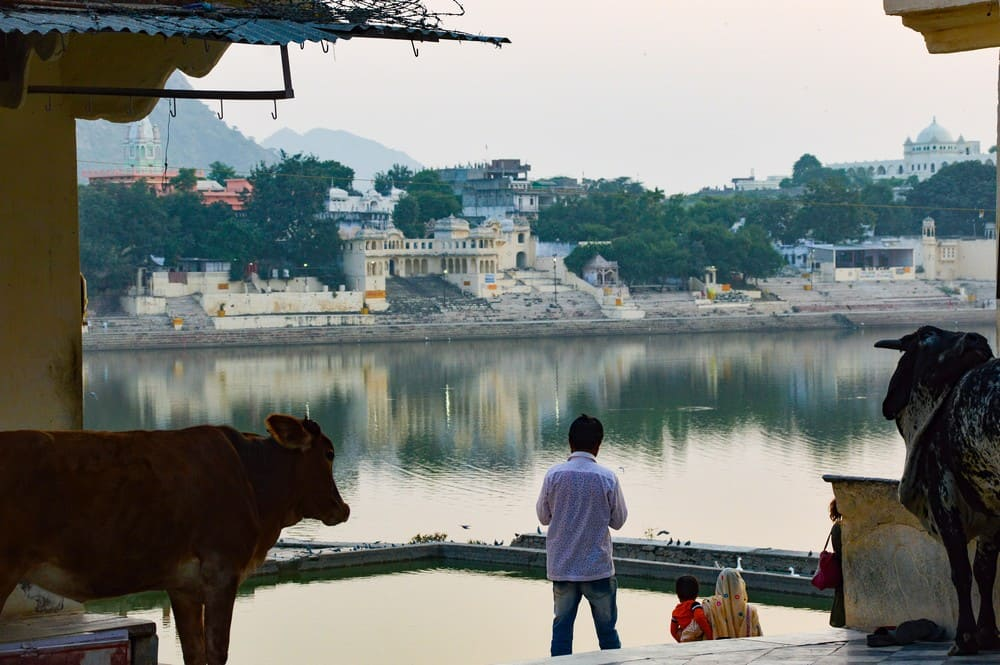 Rajasthan viaje a India en español