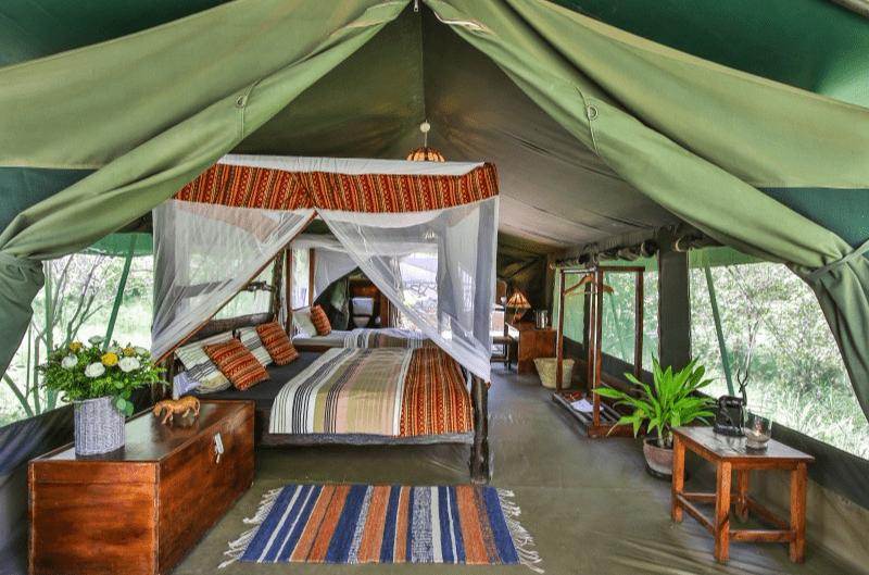 Viaje de Safari, Africa
