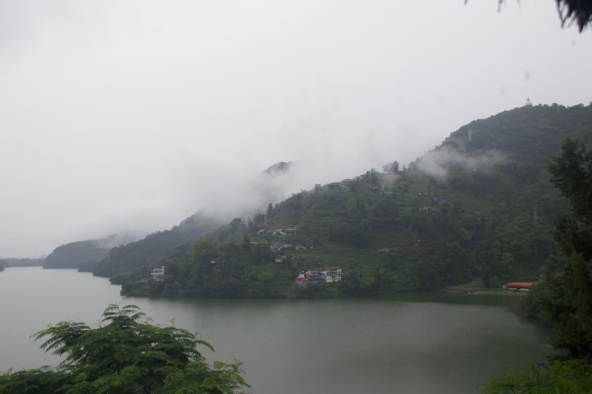 moson en nepal