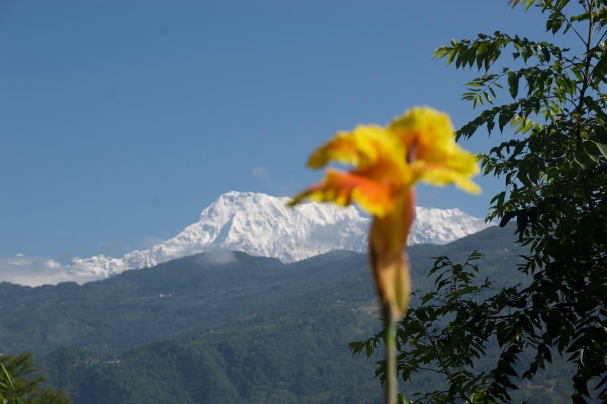 nepal annapurnas